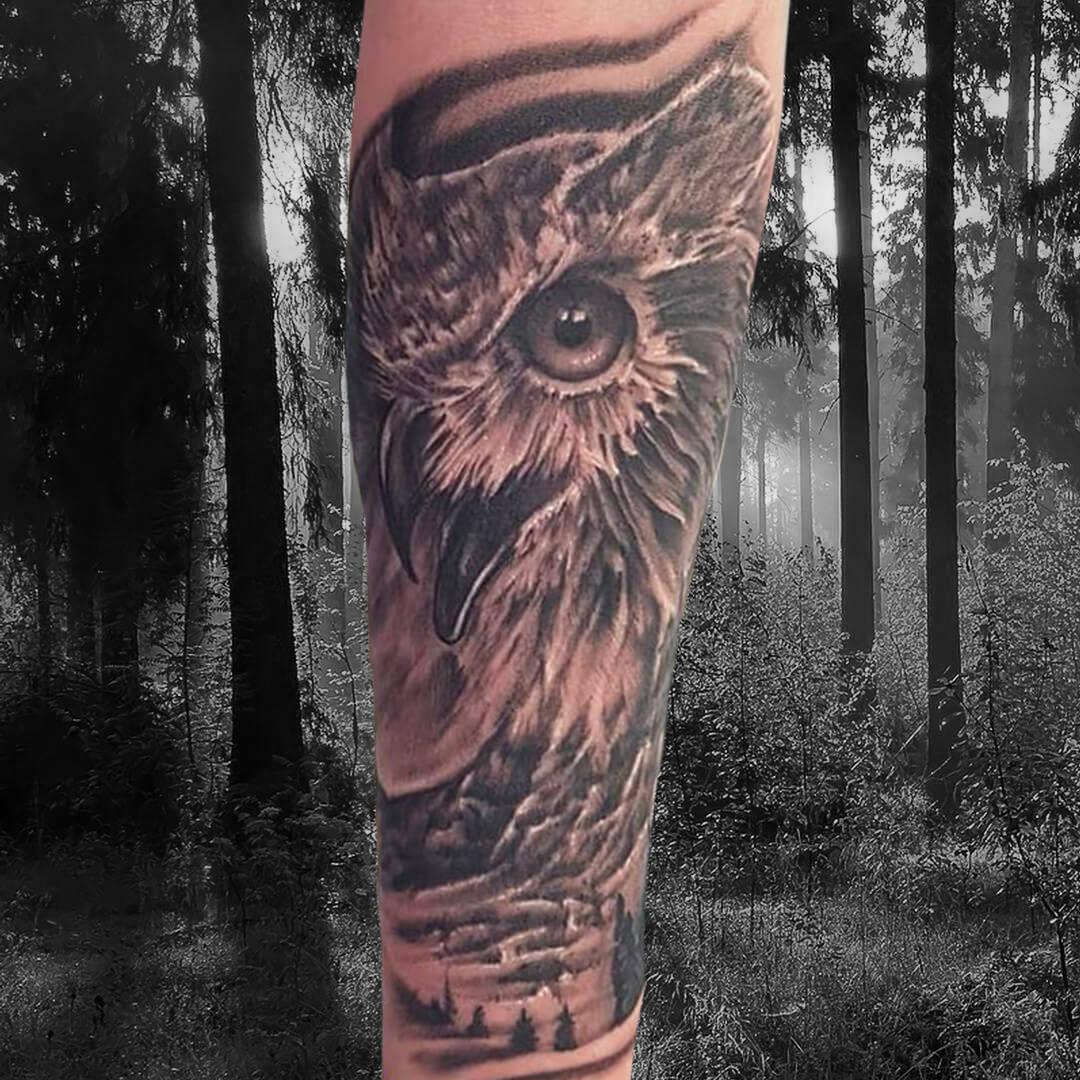 DC OWl